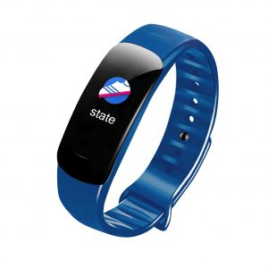 fitbit smart watches
